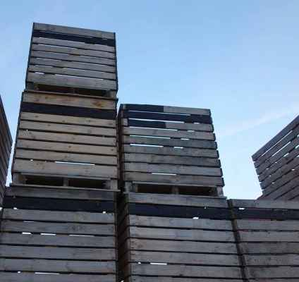 Walnuss-Kisten